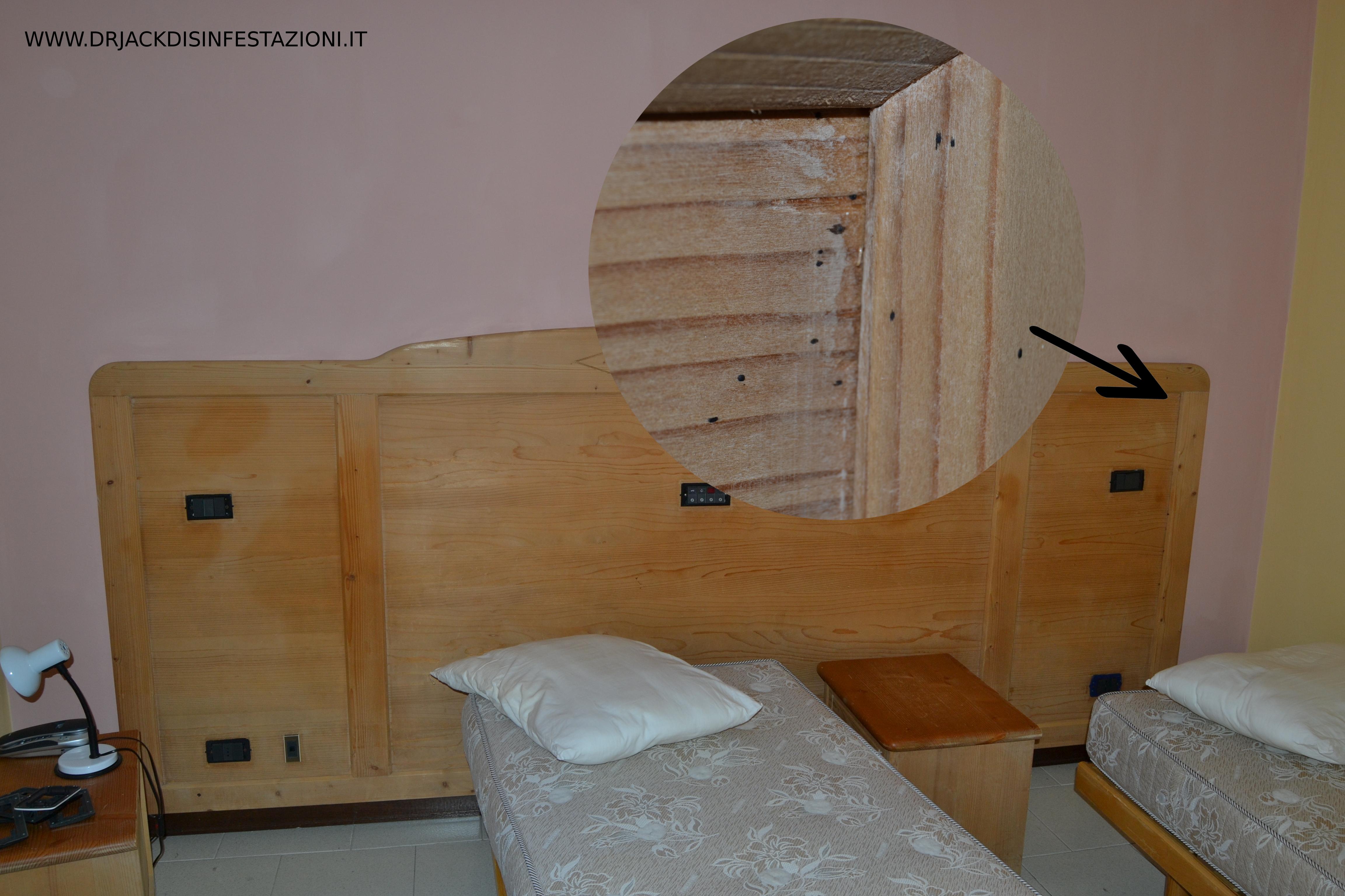 Le cimici del letto in inglese design del - Letto a castello in inglese ...